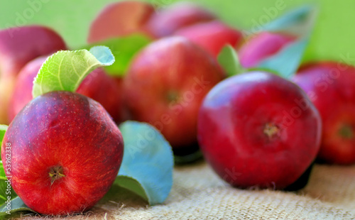 Red apples on green background
