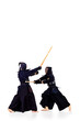 battle kendo