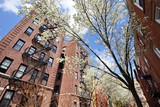 Fototapety New York Apartments in the Spring