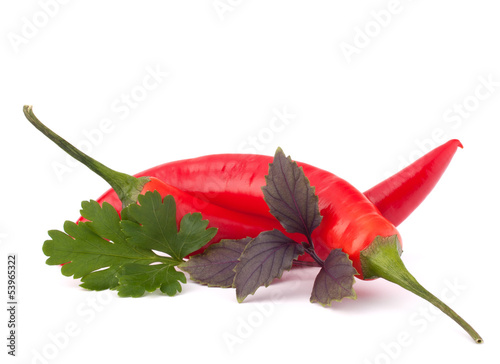 Hot red chili or chilli pepper and aromatic herbs leaves still l