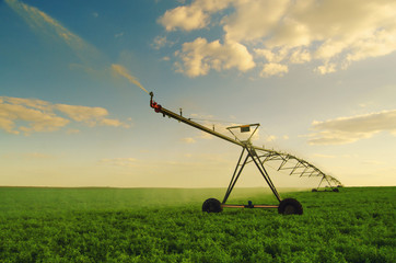 Irrigation system watering field of peas