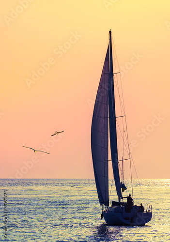 Deurstickers Zeilen skyline sailboat and two seagull