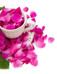 pink rose petals in a beautiful tea cup