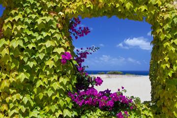 Finestra naturale con fiori di petunie.
