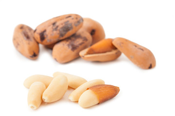 Pine nuts isolated