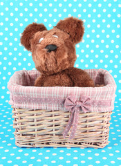 Beautiful basket with toy bear on a blue background