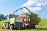 Harvester cutting field, loading Silage intoo a Tractor Trailer