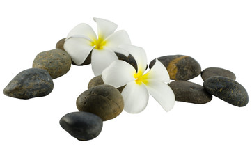 Spa composition on a white background