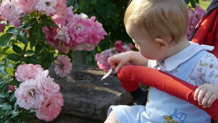 HD1080p25 Young blond baby exploring flowers in the garden