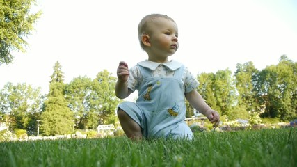 HD1080p25 Young baby exploring the meadow