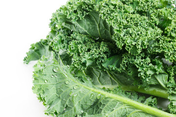 Fresh kale on white background