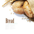 canvas print picture - Freshly baked bread