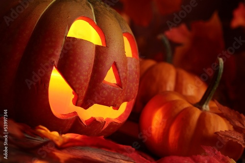 Pumkin head and small pumpkins on colorful leave