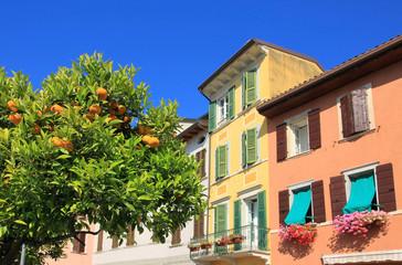 Zitronenbaum und Häuserreihe mediterran