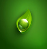 vector element for ecological design with a leaf and a drop