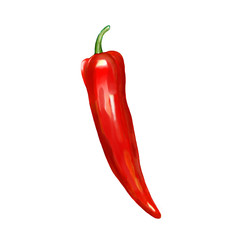 Painting of red hot chili pepper isolated