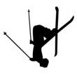 Skispringer Ski Vektor Silhouette