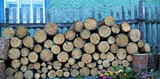 woodpile near a wooden fence poster