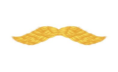 Ginger mustache