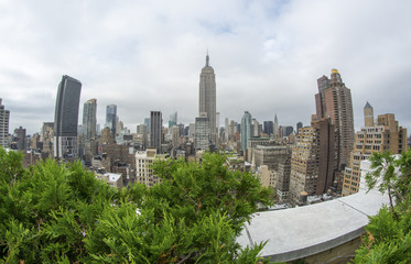 Wonderful aerial view of New York Skyscrapers with vegetation fr