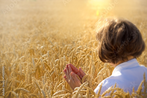 Woman holds wheat and pray for harvest