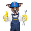 Craftsman dog
