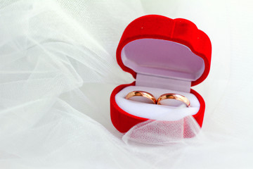 Wedding rings in red box close-up
