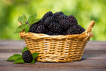 Blackberries in the basket