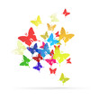 Abstract butterflies vector logo background