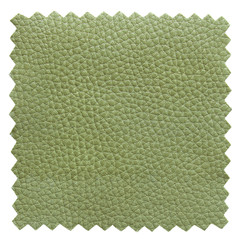 green leather samples texture