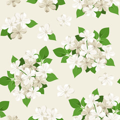 Seamless pattern with white flowers. Vector illustration.