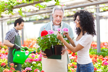 Woman buying flowers in a greenhouse