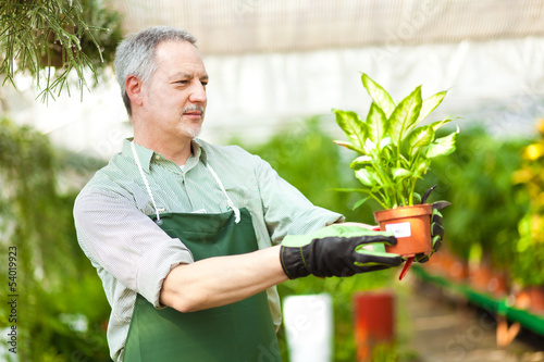 Greenhouse employee