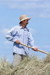 Rolnik pracujący przy sianie na tle nieba