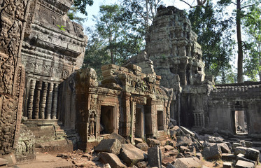 Ta Prohm ancient temple Angkor Wat Cambodia