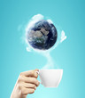 cup with earth