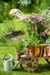 Gartenidylle mit Leiterwagen - 54024911