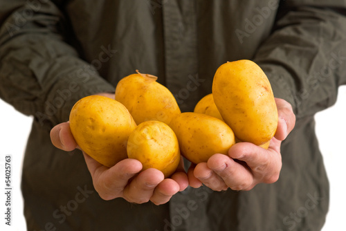 Farmer holding potato