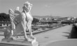Vienna - sphinx for Belvedere palace in morning and the town