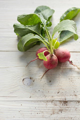 Small garden radish on wooden background