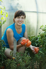 Happy  woman with tomato harvest