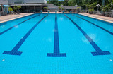 blue swimming pool and starting places at sport center