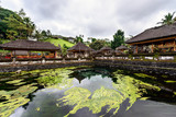 The pool of holy springs at Tirta Empul, Bali Indonesia.