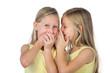 Little girl whispering to her sister