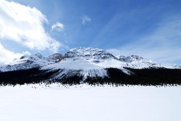 カナディアン・ロッキー 冬のボウ峠