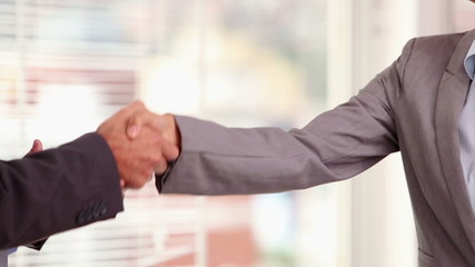 Businesswoman shaking hand of a businessman as an agreement