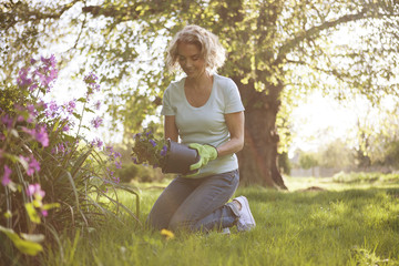 A mature woman planting flowers in a garden