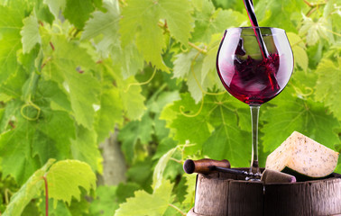 Splash red wine against a black background