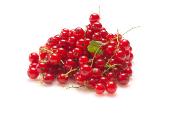 Currant Red
