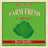 Vintage farm fresh cabbage poster